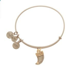 Alex and Ani  Tiger's Claw Expandable Bracelet